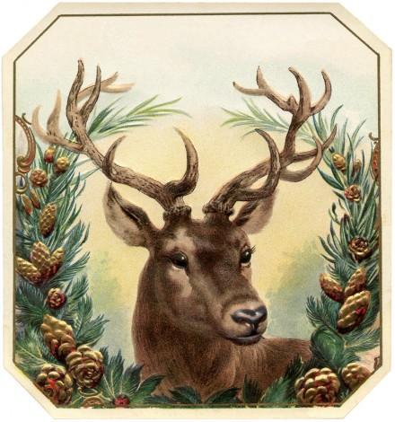 Free-Vintage-Christmas-Image-Deer-GraphicsFairy-957x1024