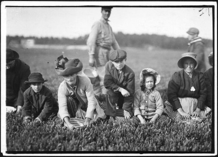 Annette_Roy,_the_youngest_worker,_7_years_old._Picked_last_summer._Also_Napoleon_Ruel,_9_years_old._South_Carver,_Mass._-_NARA_-_523468